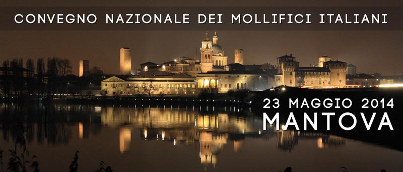 Convegno nazionale Anccem Mantova 2014